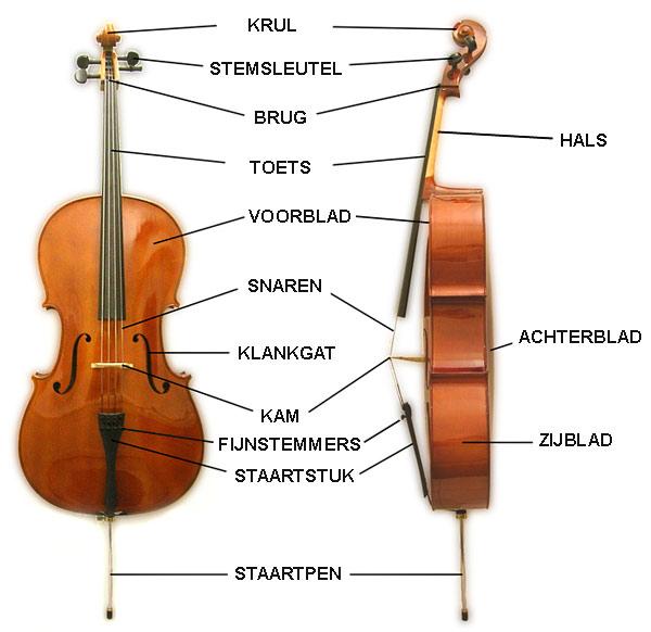 cello onderdelen